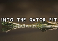 Into the Gator Pit